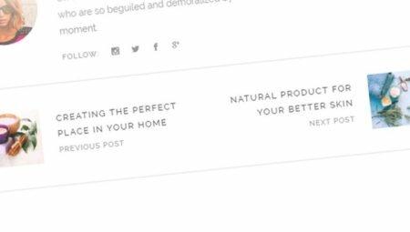 Предыдущая и следующая запись WordPress с миниатюрой, заголовком и отрывком