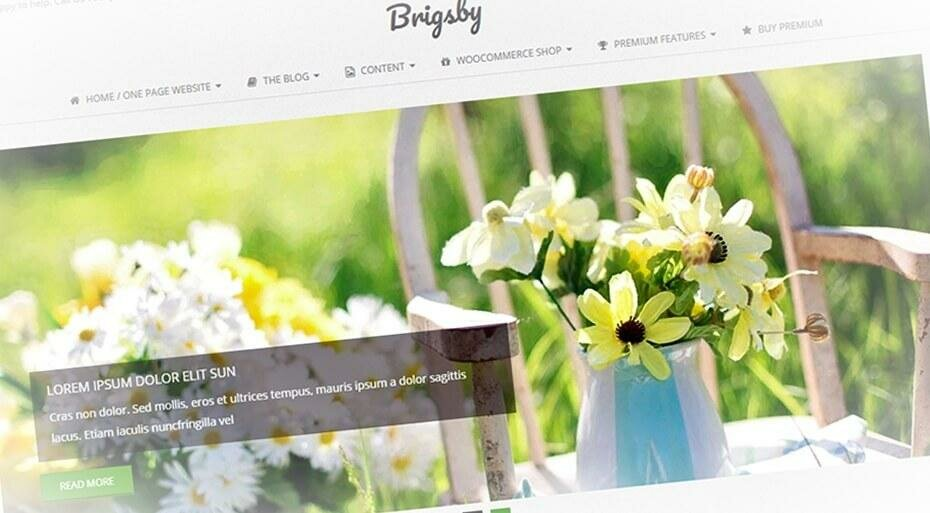 Brigsby — превосходный шаблон для блога WordPress бесплатно